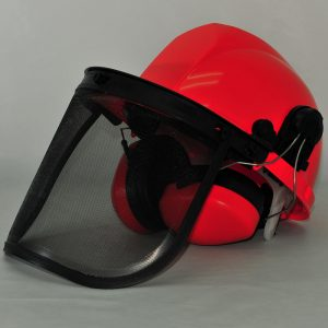 ultrasafe helmet with ear muffs